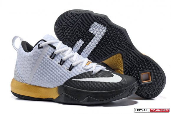 Cheap Nike LeBron Ambassador 9 On www.cheapskd10.com