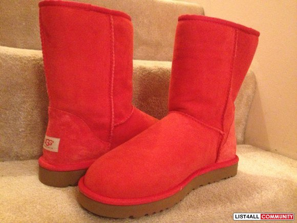 Brand new UGG boots!!