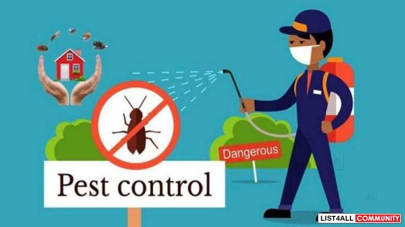 Fast Pest Control Wollongong